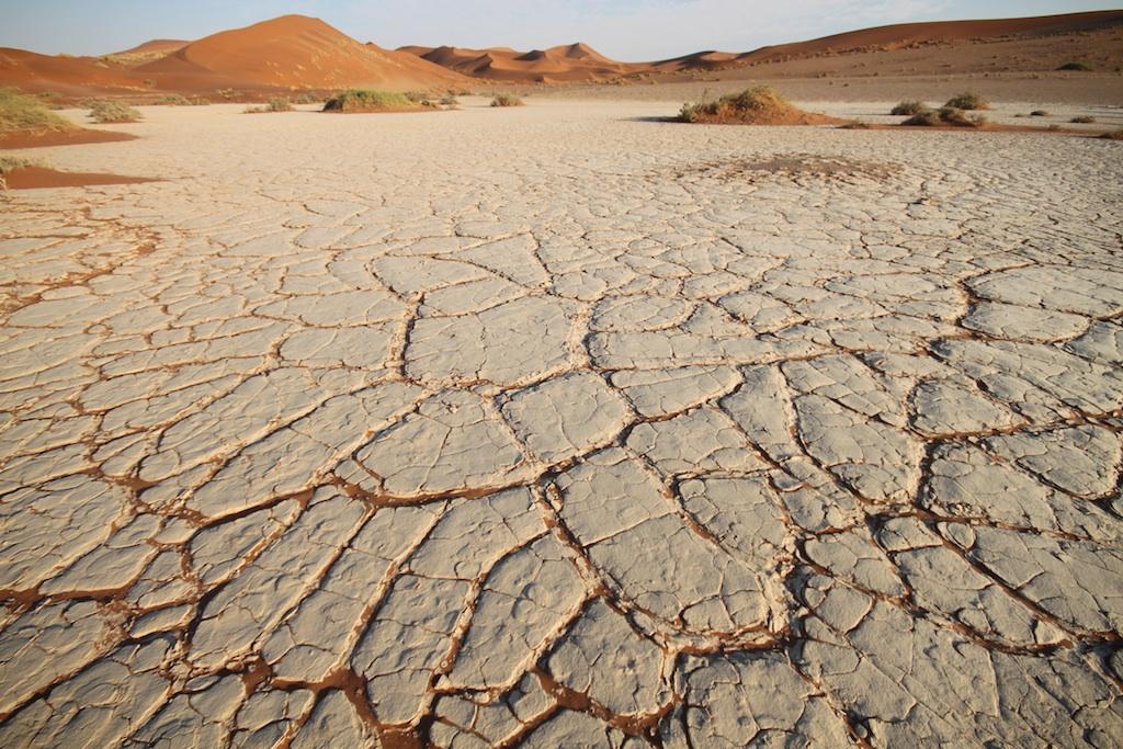乾いた砂漠